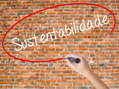 forestation: Woman Hand Writing Sustentabilidade (In portuguese - Sustainability) with black marker on visual screen. Isolated on bricks. Business concept. Stock Photo