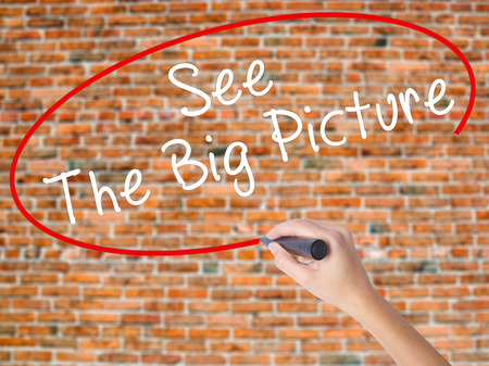 big picture: Woman Hand Writing See The Big Picture with black marker on visual screen. Isolated on bricks. Business concept. Stock Photo