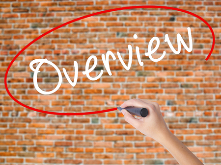 recap: Woman Hand Writing Overview with black marker on visual screen. Isolated on bricks. Business concept. Stock Photo