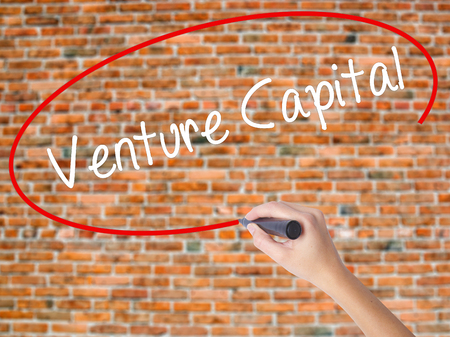 Woman Hand Writing Venture Capital with black marker on visual screen. Isolated on bricks. Business concept. Stock Photo Stock Photo
