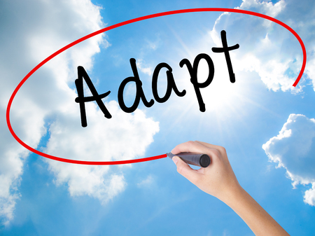 Woman Hand Writing Adapt with black marker on visual screen. Isolated on Sunny Sky. Business concept. Stock Photo