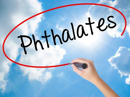 Woman Hand Writing  Phthalates  with black marker on visual screen. Isolated on Sunny Sky. Business concept. Stock Photo Stock Photo