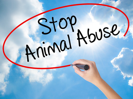 maltreatment: Woman Hand Writing Stop Animal Abuse with black marker on visual screen. Isolated on Sunny Sky. Business,  technology, internet concept. Stock Photo