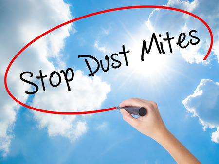 Woman Hand Writing Stop Dust Mites  with black marker on visual screen. Isolated on Sunny Sky. Business concept. Stock Photo