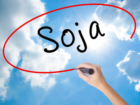 soja: Woman Hand Writing Soja (Soybean in Portuguese) with black marker on visual screen. Isolated on Sunny Sky. Business concept. Stock Photo Stock Photo