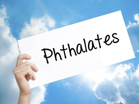 phthalates: Man Hand Holding Paper with text  Phthalates  . Sign on white paper. Isolated on Sky background.  Business concept. Stock Photo Stock Photo