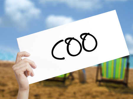 coo: COO (Chief Operating Officer) Sign on white paper. Man Hand Holding Paper with text. Isolated on holiday background.  Business concept. Stock Photo