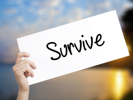 Survive Sign on white paper. Man Hand Holding Paper with text. Isolated on sunset background.  Business concept. Stock Photo