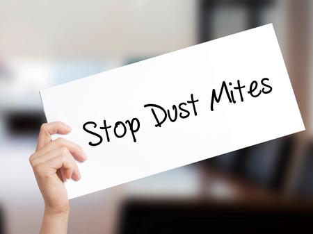 carpet clean: Stop Dust Mites  Sign on white paper. Man Hand Holding Paper with text. Isolated on Office background.  Business concept. Stock Photo