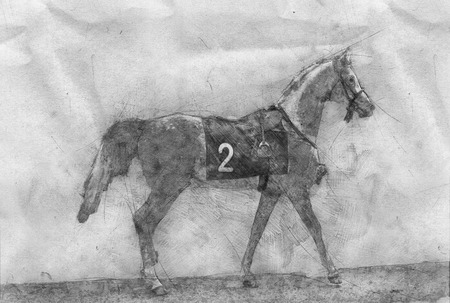 Racing Horse competition black horse painting illustration isolated on white background