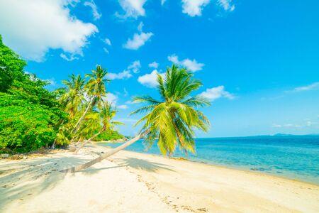 Belle plage ensoleillée. Vue sur une belle plage tropicale avec des palmiers autour. Concept de vacances et de vacances