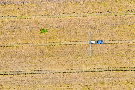 Aerial top view photo from flying drone of a land with sown green fields in countryside in spring day. Land with grown plants of paddy Foto de archivo