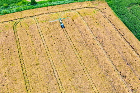 Aerial top view photo from flying drone of a land with sown green fields in countryside in spring day. Land with grown plants of paddy