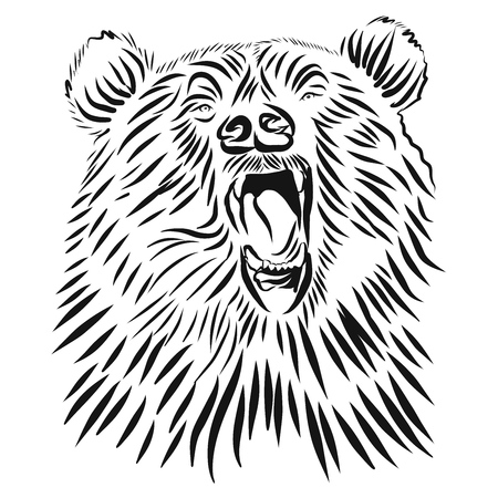 Wild grizzly, Hand drawn vector roaring bear. T-shirt design. Angry animal head illustration