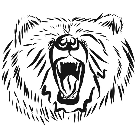 rearing: grizzly bear head, rearing angry pose, front view illustration isolated on white background