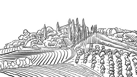 agrarian: Provence Landscape Apple Plant and Vineyard, Vector Sketched Outline Artwork