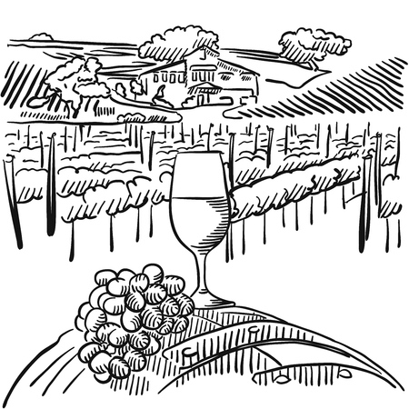 Vineyard with hills and Glass of Vine in Foreground, Vector Outline Sketched Artwork Illustration