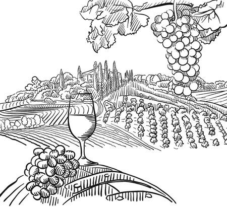Wijngaard Compositie met Druiven en Glas Vine, Vector geschetst Outline Artwork