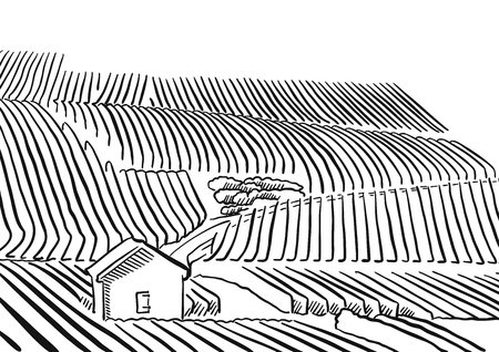 wine growing: Provence Vineyard whith hills and small House, Vector Sketched Outline Artwork