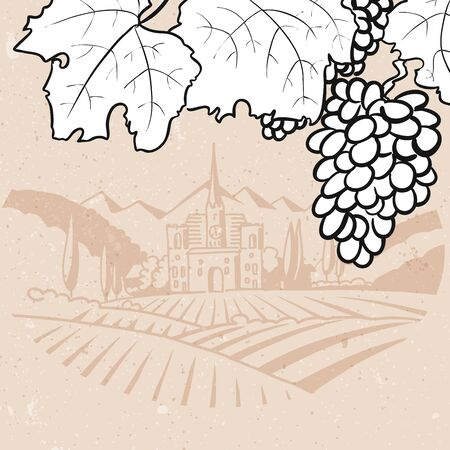 farm hand: Black and White Grapes in Front of Vintage Vinyard Farm, Hand drawn Vector Artwork