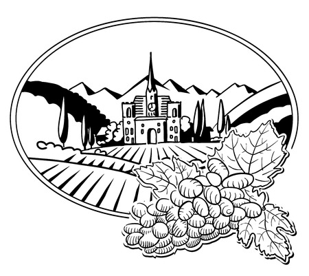 tuscany vineyard: Grapes with Sketched Vineyard Farm Label, Hand drawn Vector Artwork
