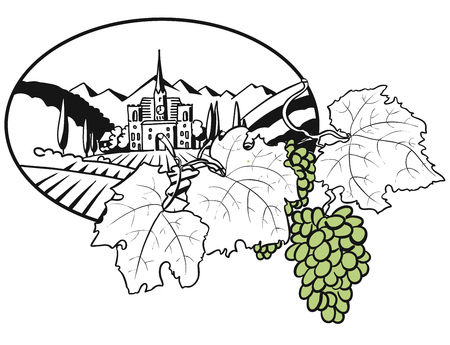 Vineyard Farm Cover Design with colored Grapes, Hand drawn Vector Artwork