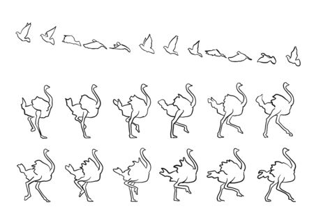 framed: Pigeon and Ostrich framed Fly and Walk, sketched hand-drawn vector Outline Artwork Illustration