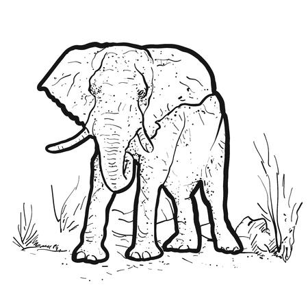 Elephant Outline Illustration, Hand-drawn Vector Clipart