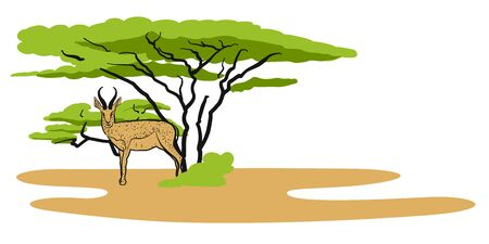 Antelope in savanna, Illustration, Hand-drawn Vector Outline Sketch Illustration