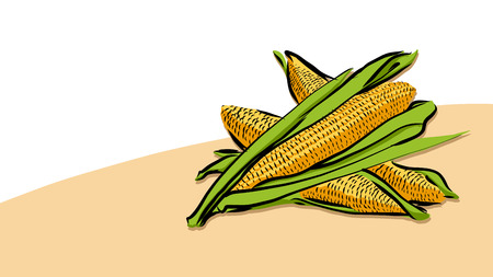 Colored Corn Vector Card, Fresh Food Collection, Handdrawn Clean Outline Sketch