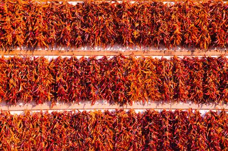벽, 유기 음식 기호 및 배경에 매운 고추