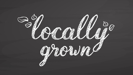 Locally grown lettering on chalkboard, handdrawn vector sketch, clean outlines, vintage style blackboard.