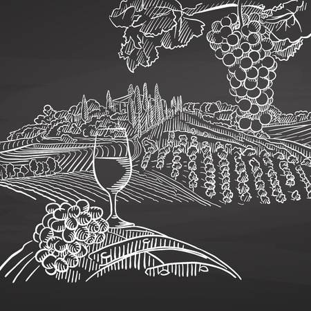 Vintage wine and landscape on chalkboard. Hand drawn healthy food sketch. Black and White Vector Drawing on Blackboard.