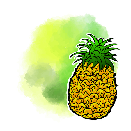 Pineapple Poster Design Background. Concept Vector Artwork with copy Space. Ideal for Food Price Labeling and Poster Layouts.