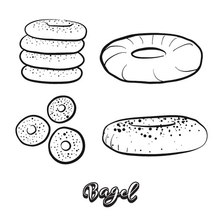 Hand drawn sketch of Bagel food. Vector drawing of Yeast bread food, usually known in Polish, Ashkenazi, Jewish. Bread illustration series.