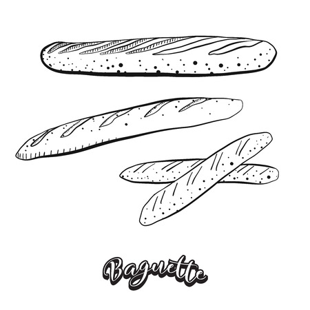 Hand drawn sketch of Baguette food. Vector drawing of Yeast bread food, usually known in France. Bread illustration series.