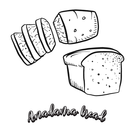 Hand drawn sketch of Anadama bread food. Vector drawing of Yeast bread food, usually known in United States, New England. Bread illustration series.