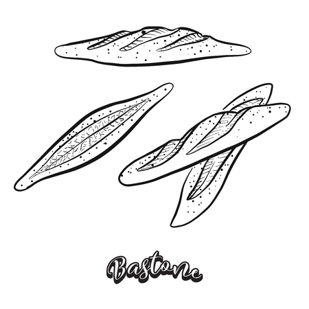Hand drawn sketch of Bastone bread. Vector drawing of Yeast bread food, usually known in Italy. Bread illustration series.
