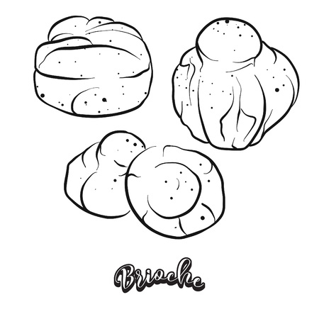 Hand drawn sketch of Brioche bread. Vector drawing of Yeast bread, Sweet food, usually known in France. Bread illustration series. Illustration
