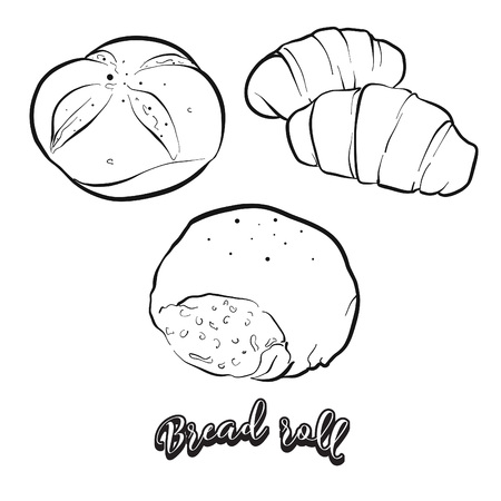 Hand drawn sketch of Bread roll bread. Vector drawing of Bun food, usually known in Europe. Bread illustration series.