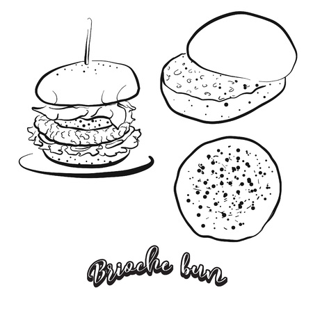 Hand drawn sketch of Brioche bun bread. Vector drawing of Yeast bread, Sweet, Bun food, usually known in France. Bread illustration series.