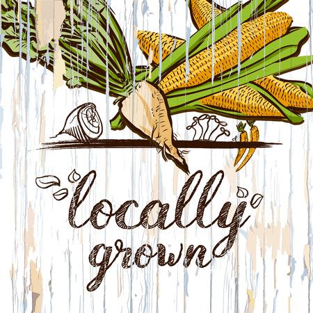 Locally grown illustration on wood. Vector food illustration.