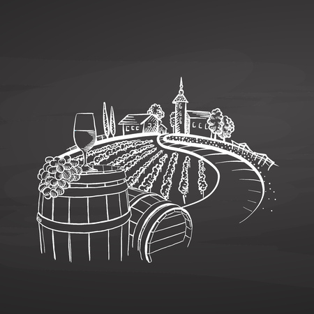 Vineyard drawing on chalkboard, hand-drawn vector food illustration for vine label and social media marketing 向量圖像