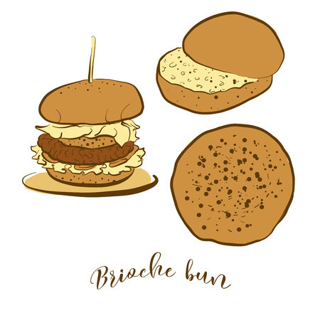 Colored sketches of Brioche bun bread. Vector drawing of Yeast bread, Sweet, Bun food, usually known in France. Colored Bread illustration series. Illusztráció