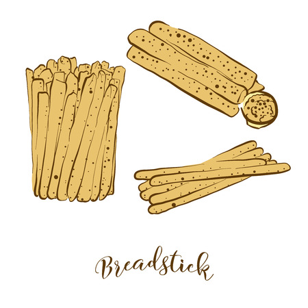 Colored sketches of Breadstick bread. Vector drawing of Dry bread food, usually known in Italy. Colored Bread illustration series.