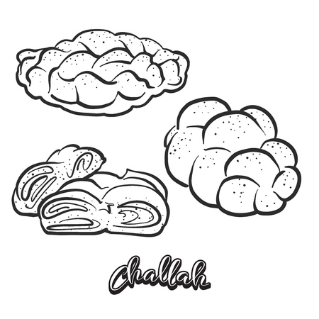 Hand drawn sketch of Challah bread. Vector drawing of Leavened food, usually known in Poland and Israel. Bread illustration series.