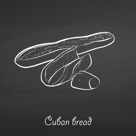 Cuban bread food sketch on chalkboard. Vector drawing of Yeast bread, usually known in United States. Food illustration series. Ilustracja