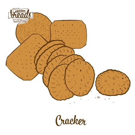 Cracker bread. Vector illustration of Crispy bread food, usually known in International. Colored Bread sketches.