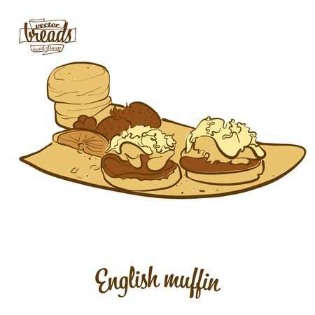 English muffin bread. Vector illustration of Yeast bread food, usually known in United Kingdom. Colored Bread sketches.