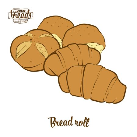 Bread roll bread. Vector illustration of Bun food, usually known in Europe. Colored Bread sketches. Archivio Fotografico - 129789724